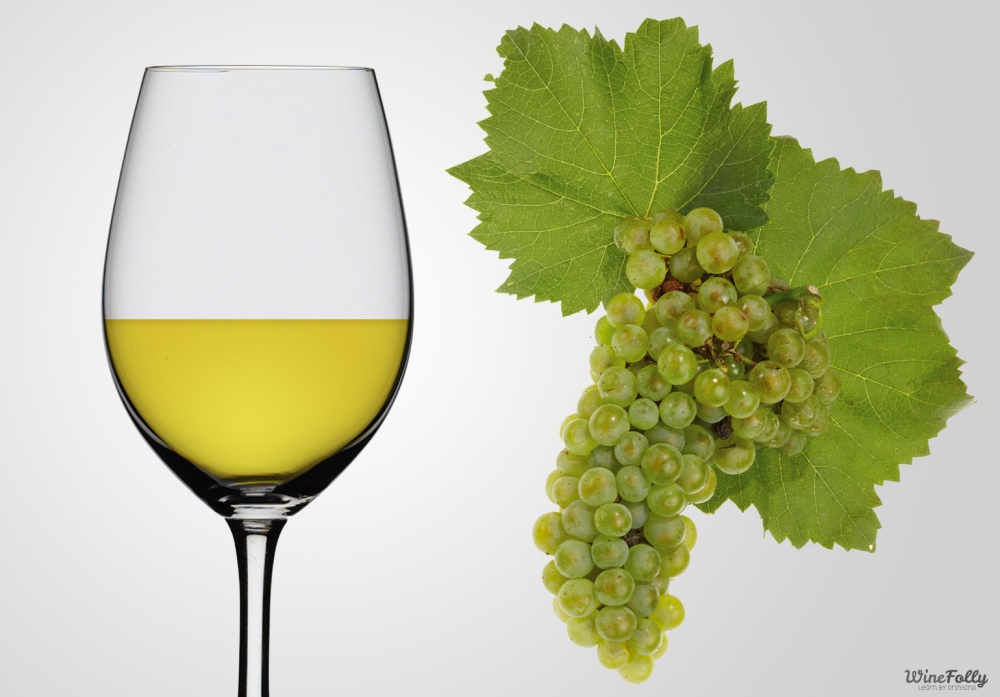 chardonnay-wine-in-a-glass-and-chardonnay-grapes