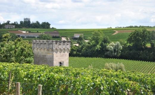 Pogled čez obzidje vasice St. Emillion