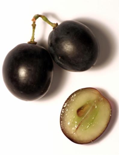 Grozdna jagoda